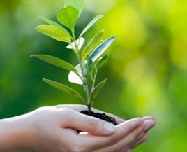 duurzaam_klein